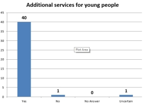 Additional services for young people